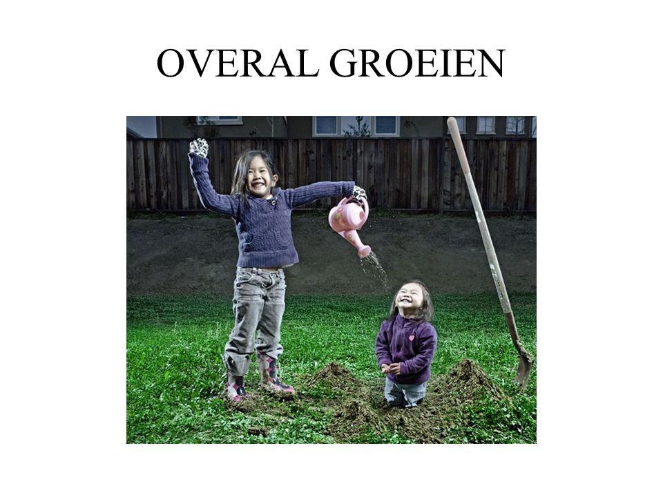 OVERAL GROEIEN