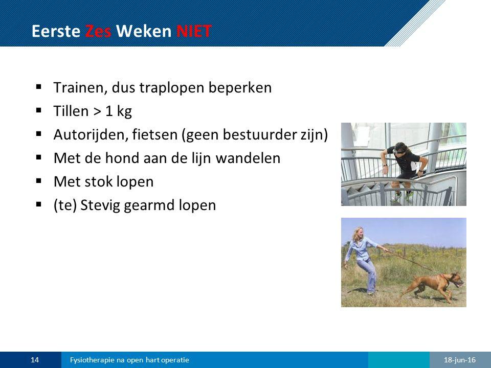 Eerste Zes Weken NIET  Trainen, dus traplopen beperken  Tillen > 1 kg  Autorijden, fietsen (geen bestuurder zijn)  Met de hond aan de lijn wandele