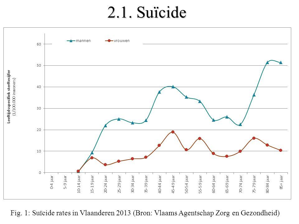 2.1. Suïcide Fig. 1: Suïcide rates in Vlaanderen 2013 (Bron: Vlaams Agentschap Zorg en Gezondheid)