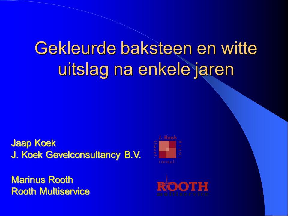 Gekleurde baksteen en witte uitslag na enkele jaren Jaap Koek J. Koek Gevelconsultancy B.V. Marinus Rooth Rooth Multiservice