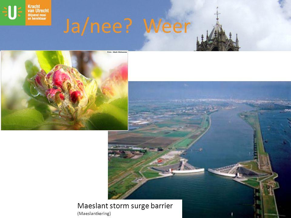Ja/nee? Weer Maeslant storm surge barrier (Maeslantkering)