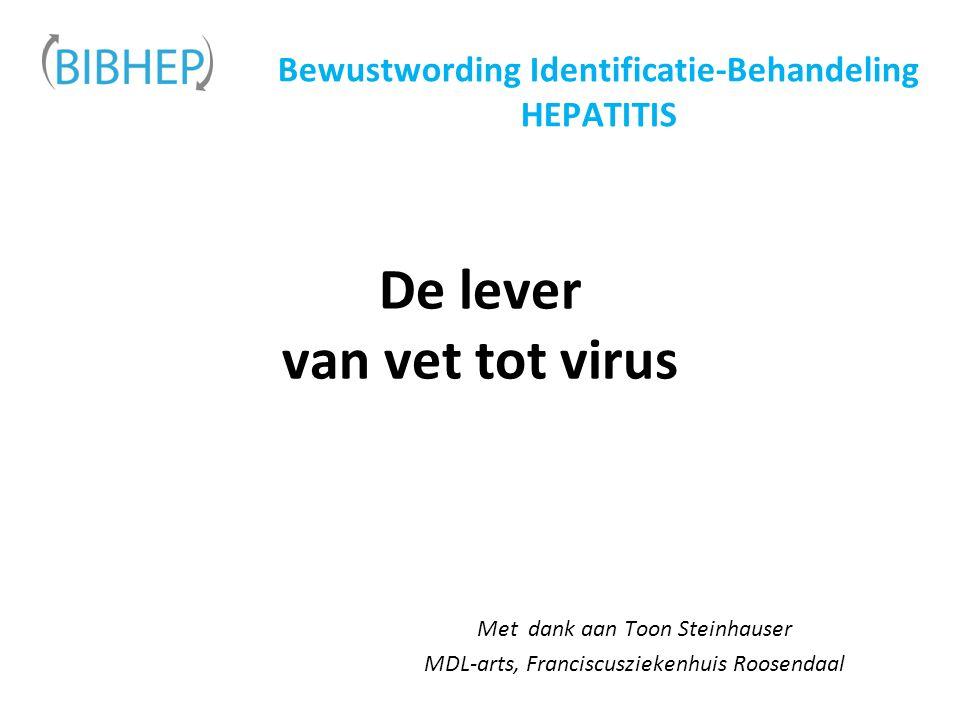 De lever van vet tot virus Met dank aan Toon Steinhauser MDL-arts, Franciscusziekenhuis Roosendaal Bewustwording Identificatie-Behandeling HEPATITIS