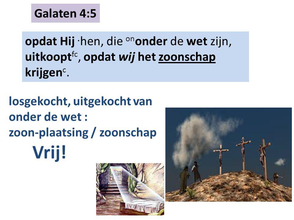 Galaten 4:5 opdat Hij. hen, die on onder de wet zijn, uitkoopt fc, opdat wij het zoonschap krijgen c. losgekocht, uitgekocht van onder de wet : zoon-p
