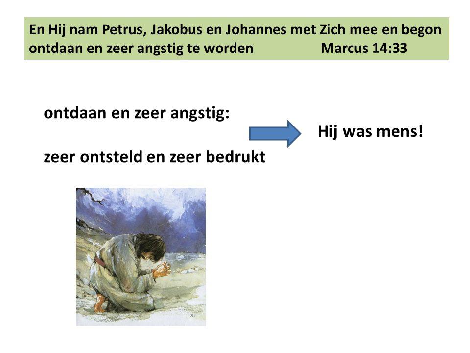 En Hij nam Petrus, Jakobus en Johannes met Zich mee en begon ontdaan en zeer angstig te worden Marcus 14:33 ontdaan en zeer angstig: zeer ontsteld en zeer bedrukt Hij was mens!