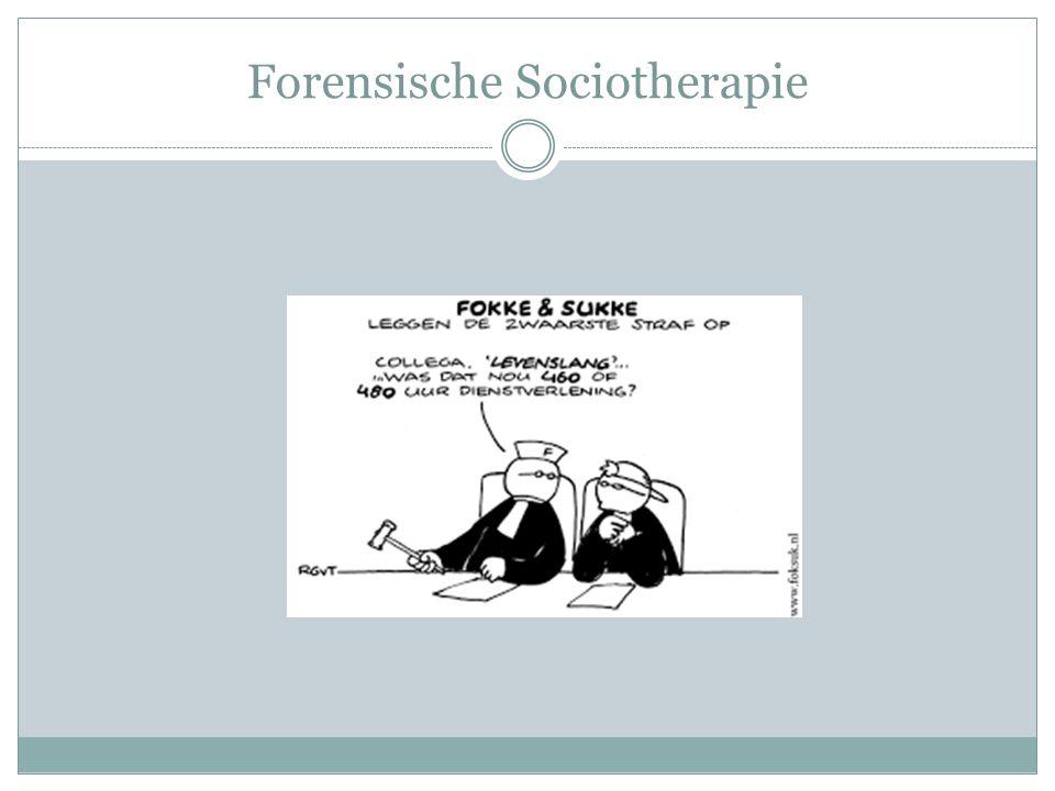 Forensische Sociotherapie