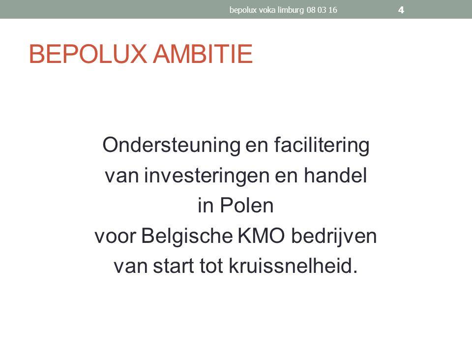 BEPOLUX AMBITIE Ondersteuning en facilitering van investeringen en handel in Polen voor Belgische KMO bedrijven van start tot kruissnelheid.