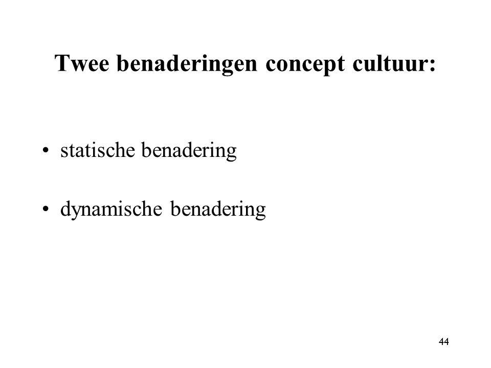44 Twee benaderingen concept cultuur: statische benadering dynamische benadering