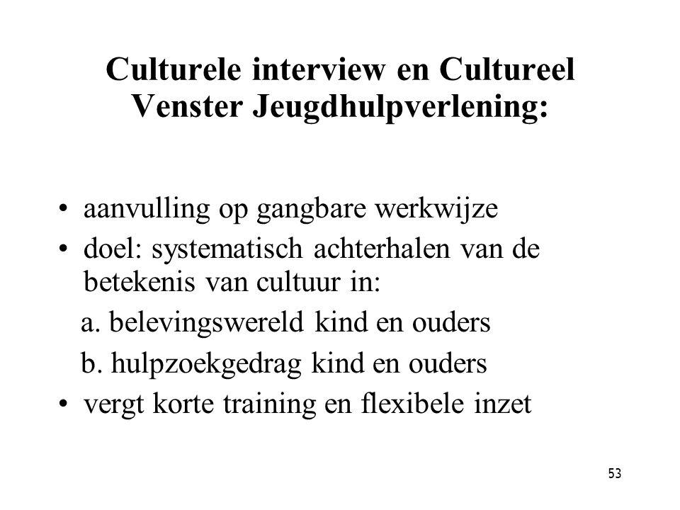 53 Culturele interview en Cultureel Venster Jeugdhulpverlening: aanvulling op gangbare werkwijze doel: systematisch achterhalen van de betekenis van c