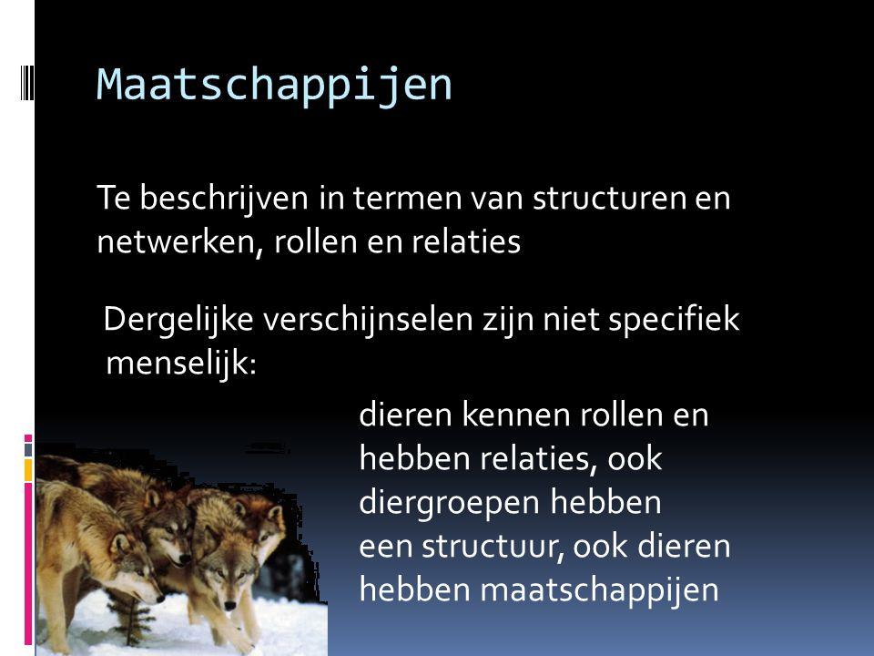 Maatschappijen Te beschrijven in termen van structuren en netwerken, rollen en relaties Dergelijke verschijnselen zijn niet specifiek menselijk: diere