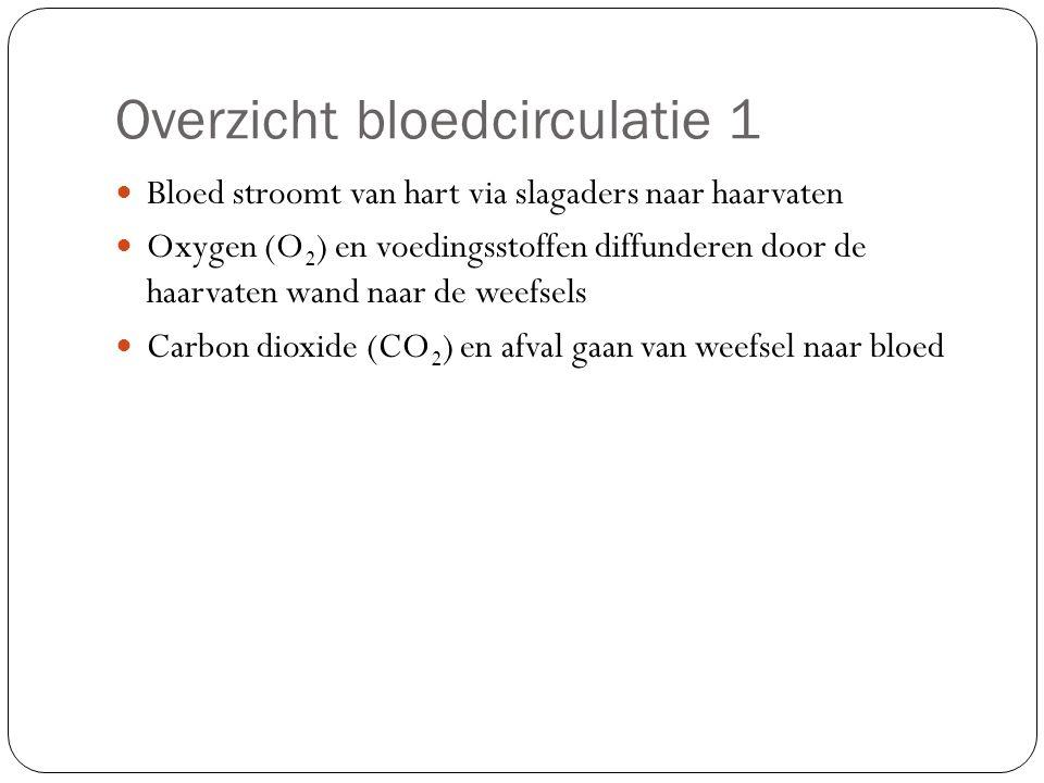 Overzicht bloedcirculatie 1 Bloed stroomt van hart via slagaders naar haarvaten Oxygen (O 2 ) en voedingsstoffen diffunderen door de haarvaten wand na