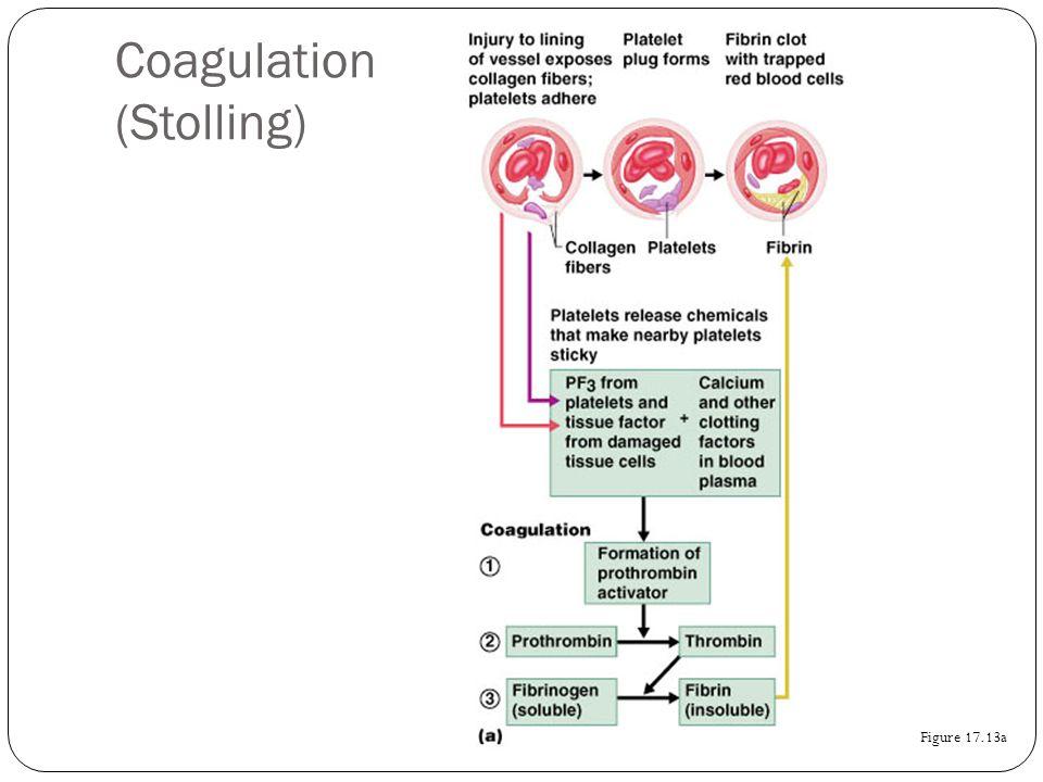 Coagulation (Stolling) Figure 17.13a