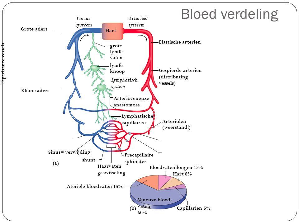 Bloed verdeling Bloedvaten longen 12% Capillarien 5% Ateriele bloedvaten 15% Veneuze bloed- vaten 60% Lymphatische capillairen Precapillaire sphincter