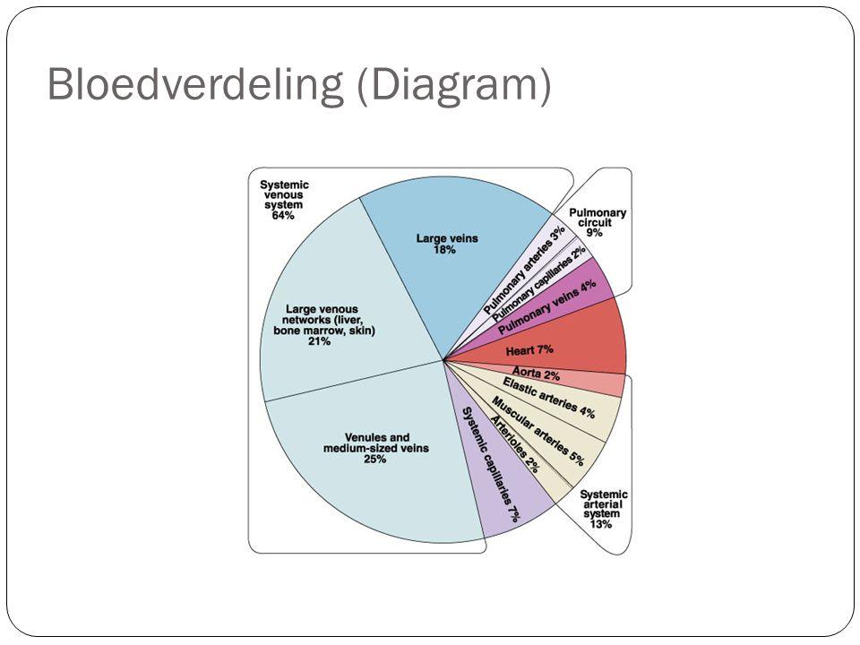 Bloedverdeling (Diagram)