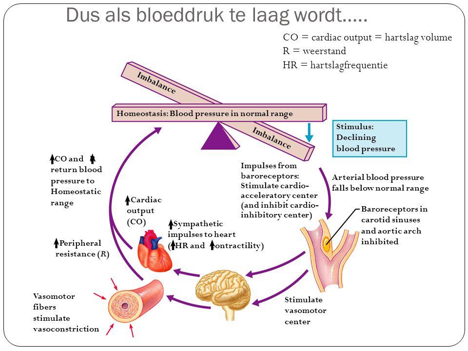 Dus als bloeddruk te laag wordt….. Vasomotor fibers stimulate vasoconstriction Stimulate vasomotor center CO and R return blood pressure to Homeostati