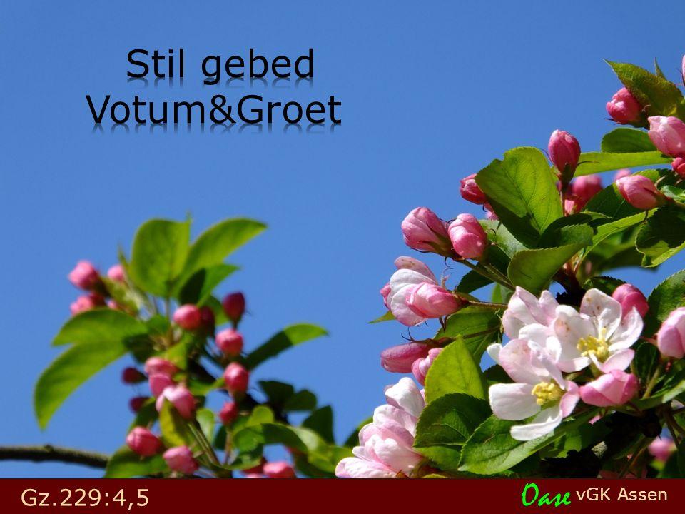 vGK Assen Oase Gz.229:4,5