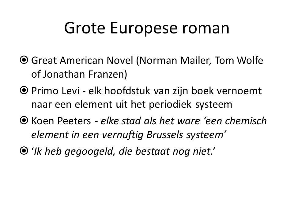 """ 36 hoofdstukken genoemd naar de Europese hoofdsteden  Opdracht – """"Ik zou graag de schoonheid van adminisstratie beschrijven, de erotiek van het zakenleven in Brussel."""