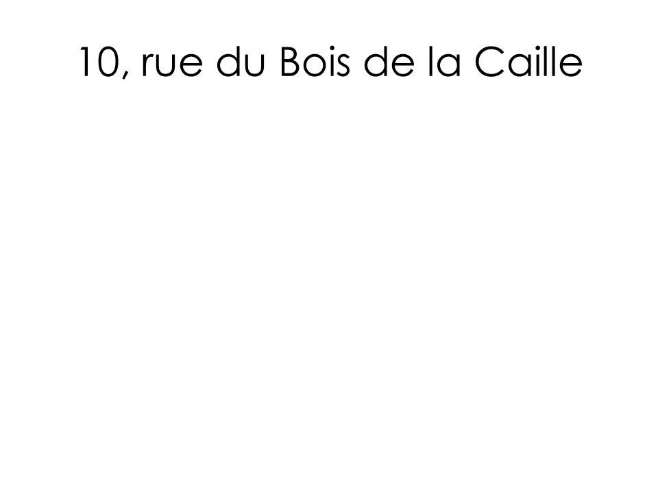 10, rue du Bois de la Caille