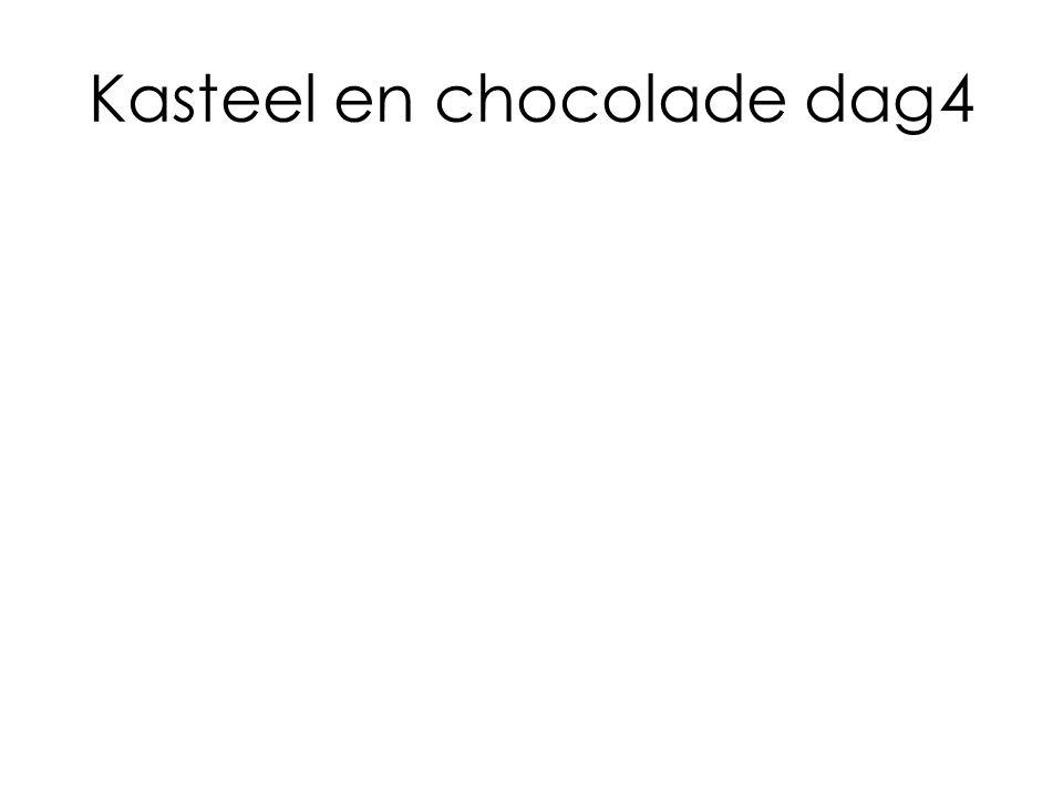 Kasteel en chocolade dag4