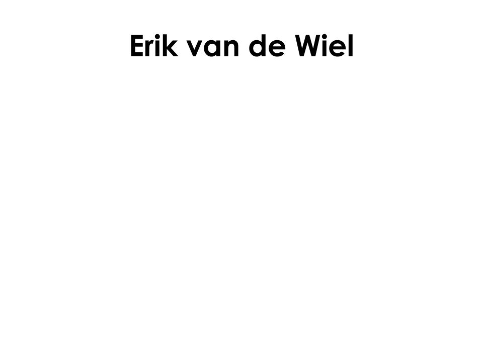 Erik van de Wiel
