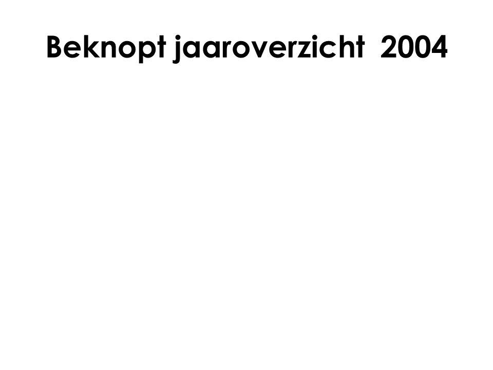 Beknopt jaaroverzicht 2004
