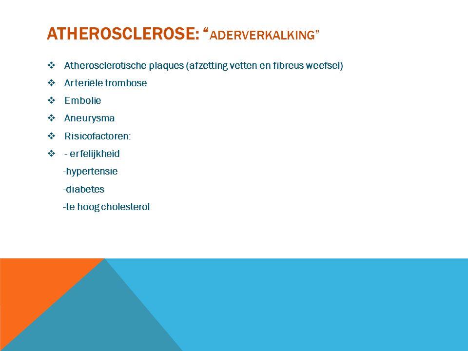 "ATHEROSCLEROSE: "" ADERVERKALKING""  Atherosclerotische plaques (afzetting vetten en fibreus weefsel)  Arteriële trombose  Embolie  Aneurysma  Risi"