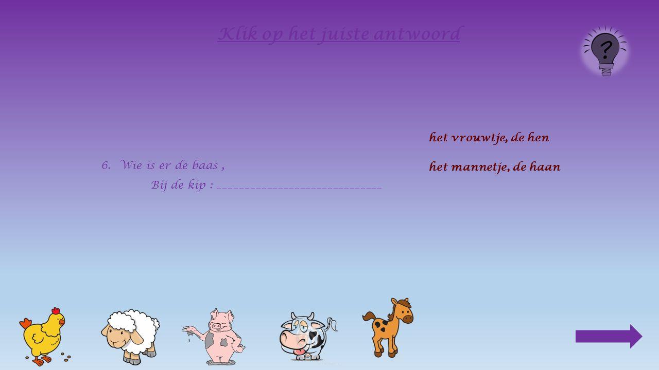 5.Waar komen ze vandaan, wie zijn hun wilde vriendjes ? De kip : het boshoen Het schaap : de moeflon Het varken : __________________ de moeflon het ev