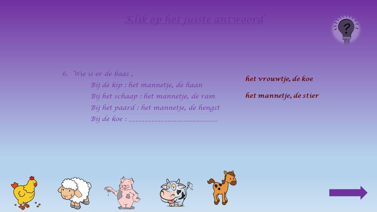 6.Wie is er de baas, Bij de kip : het mannetje, de haan Bij het schaap : het mannetje, de ram Bij het paard : __________________________ het vrouwtje, de merrie het mannetje, de hengst Klik op het juiste antwoord