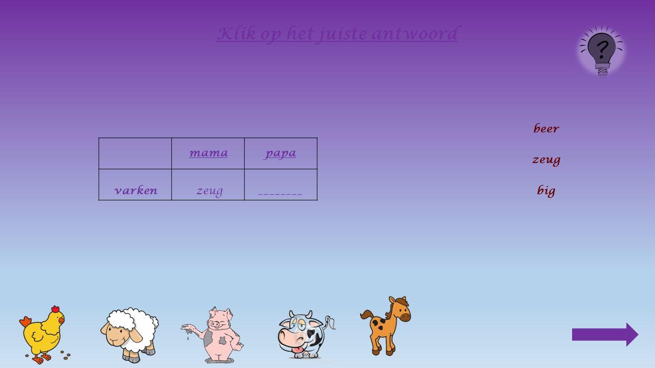 mama varken_______ Klik op het juiste antwoord beer zeug big