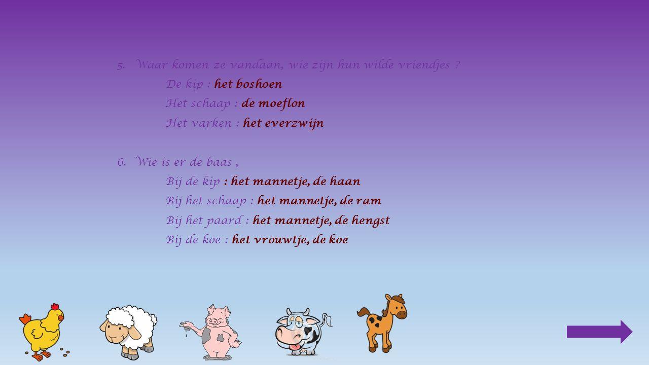 mamapapa varken________ Klik op het juiste antwoord beer zeug bigzeug