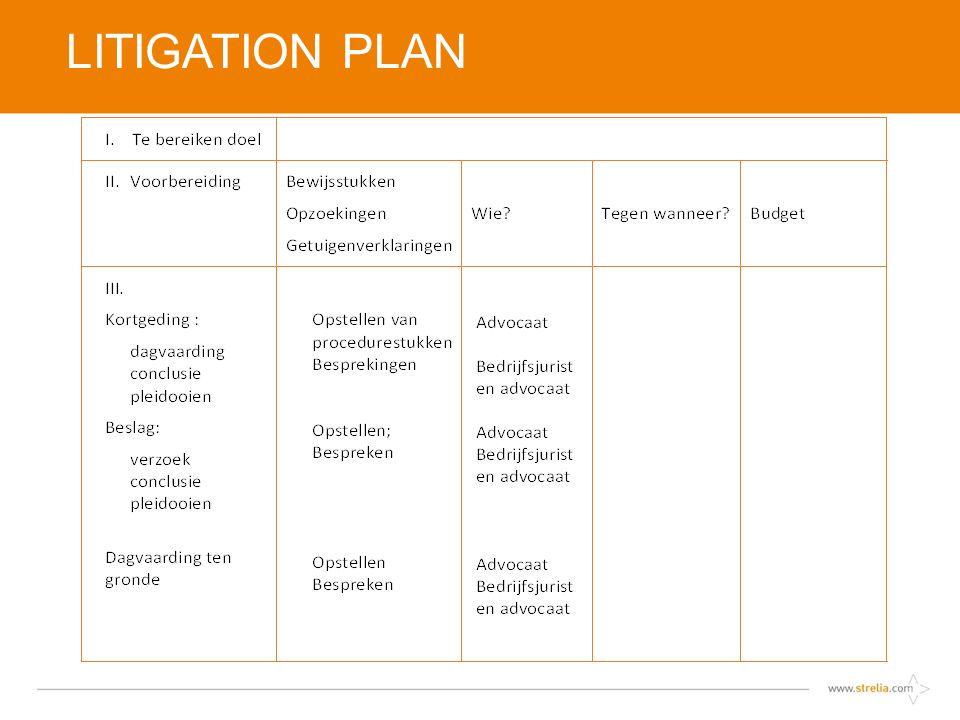 LITIGATION PLAN