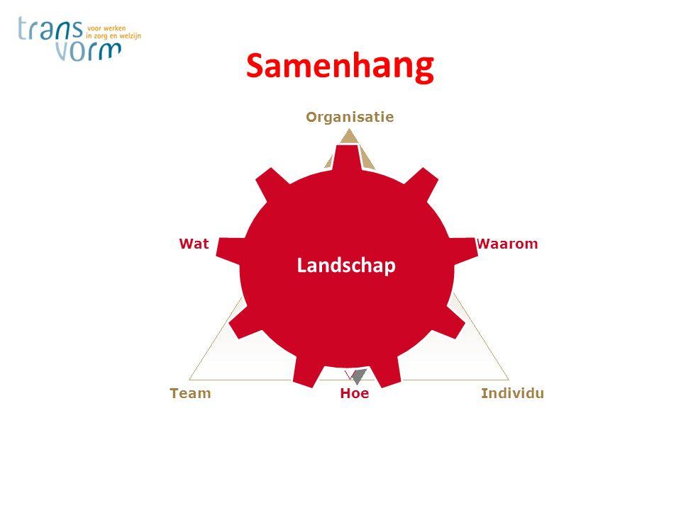 Organisatie Waarom Wat Individu Hoe Team Veerkracht Landschap Samenh ang