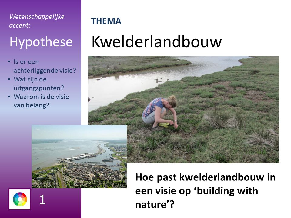 Kwelderlandbouw Hypothese Hoe past kwelderlandbouw in een visie op 'building with nature'.