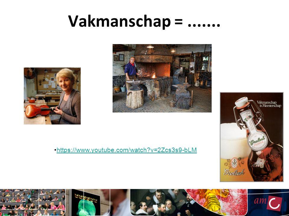 Vakmanschap =....... https://www.youtube.com/watch?v=2Zcs3s9-bLM