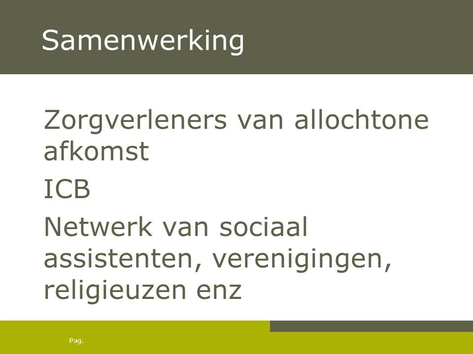 Samenwerking Zorgverleners van allochtone afkomst ICB Netwerk van sociaal assistenten, verenigingen, religieuzen enz