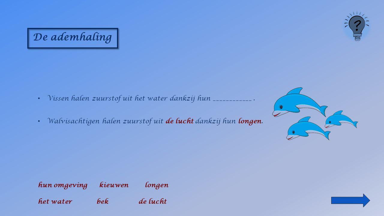 De ademhaling Vissen halen zuurstof uit _____________ hun omgeving bek longen het water kieuwen de lucht