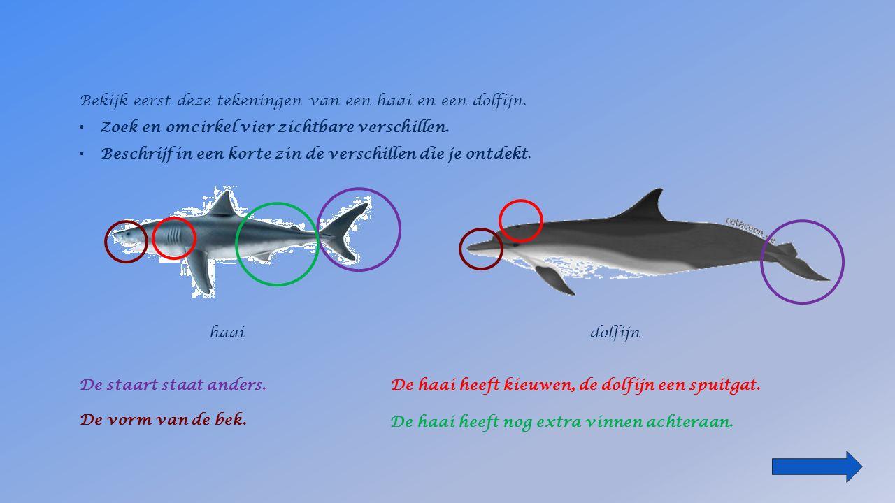 De meeste vissen hebben een huid die bedekt is met _____________.