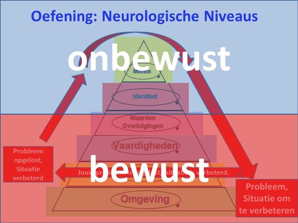 Oefening: Neurologische Niveaus Jouw probleem is opgelost, situatie is verbeterd. Probleem opgelost, Situatie verbeterd Probleem, Situatie om te verbe