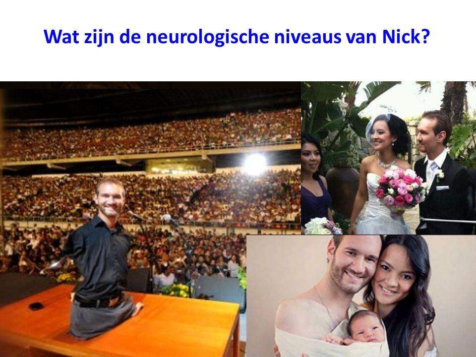 Wat zijn de neurologische niveaus van Nick?