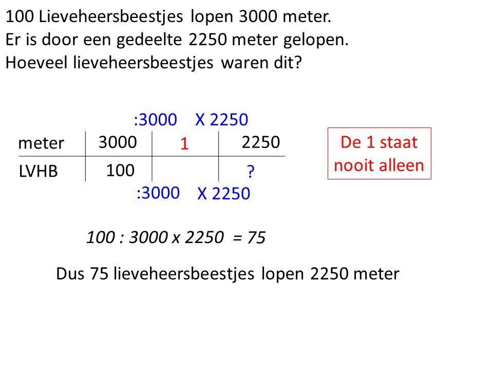 100 Lieveheersbeestjes lopen 3000 meter. Er is door een gedeelte 2250 meter gelopen.
