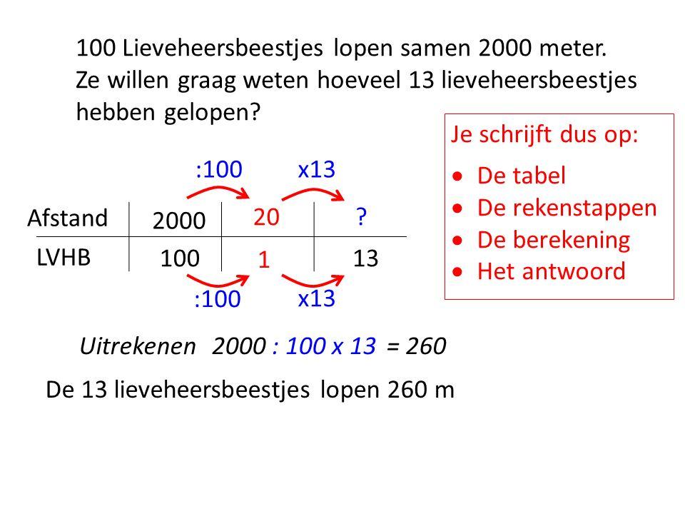 100 Lieveheersbeestjes lopen 3000 meter.De volgende dag zijn er 8 lieveheersbeestjes op bezoek.