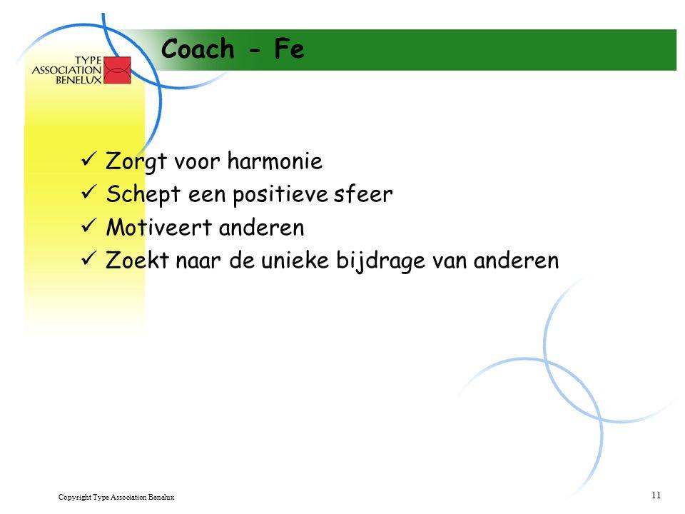 Copyright Type Association Benelux 11 Coach - Fe Zorgt voor harmonie Schept een positieve sfeer Motiveert anderen Zoekt naar de unieke bijdrage van anderen