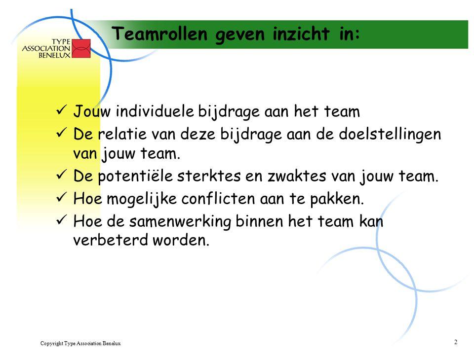 Copyright Type Association Benelux 13 Innovator - Ni Zoekt alternatieven Heeft oog voor impact op langere termijn Stelt soms radicale veranderingen voor Rijke verbeelding