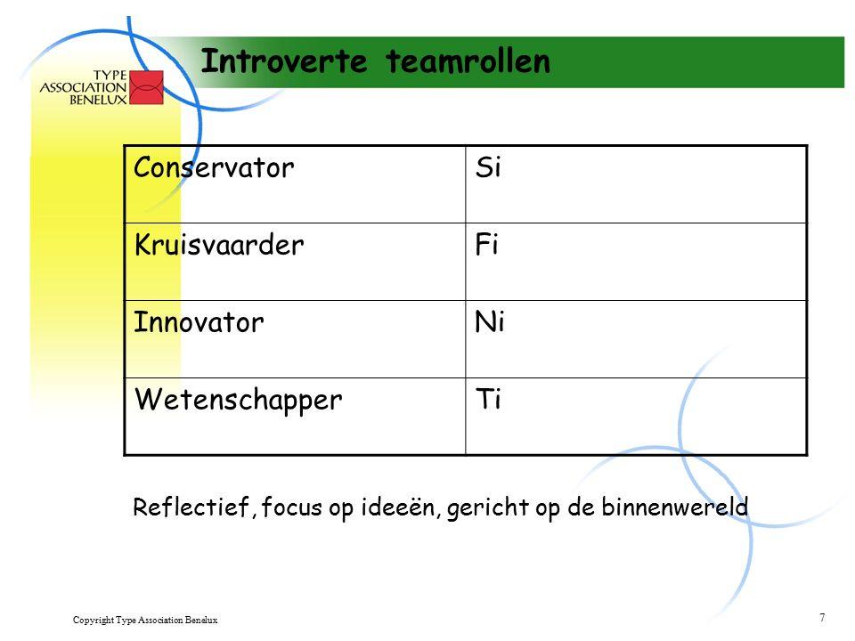 Copyright Type Association Benelux 8 Beeldhouwer - Se Is actiegericht Vertrouwt op ervaring Zoekt tastbare resultaten Houdt zich bezig met de huidige situatie
