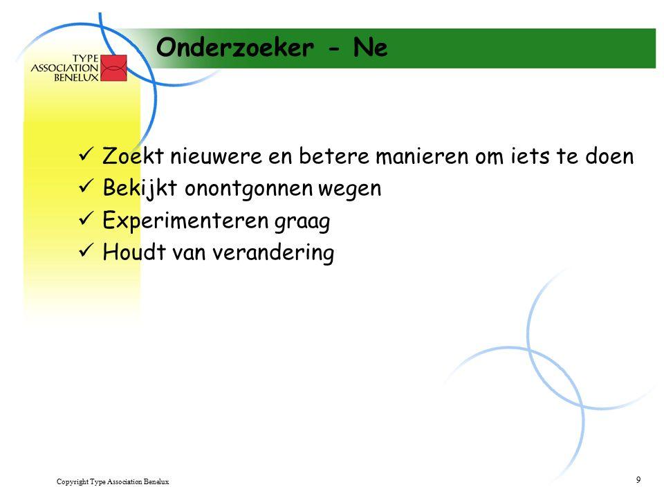 Copyright Type Association Benelux 10 Dirigent - Te Brengt organisatie en logische structuur aan Systematiseert Plant, voert procedures in Wil duidelijke rollen en verantwoordelijkheden