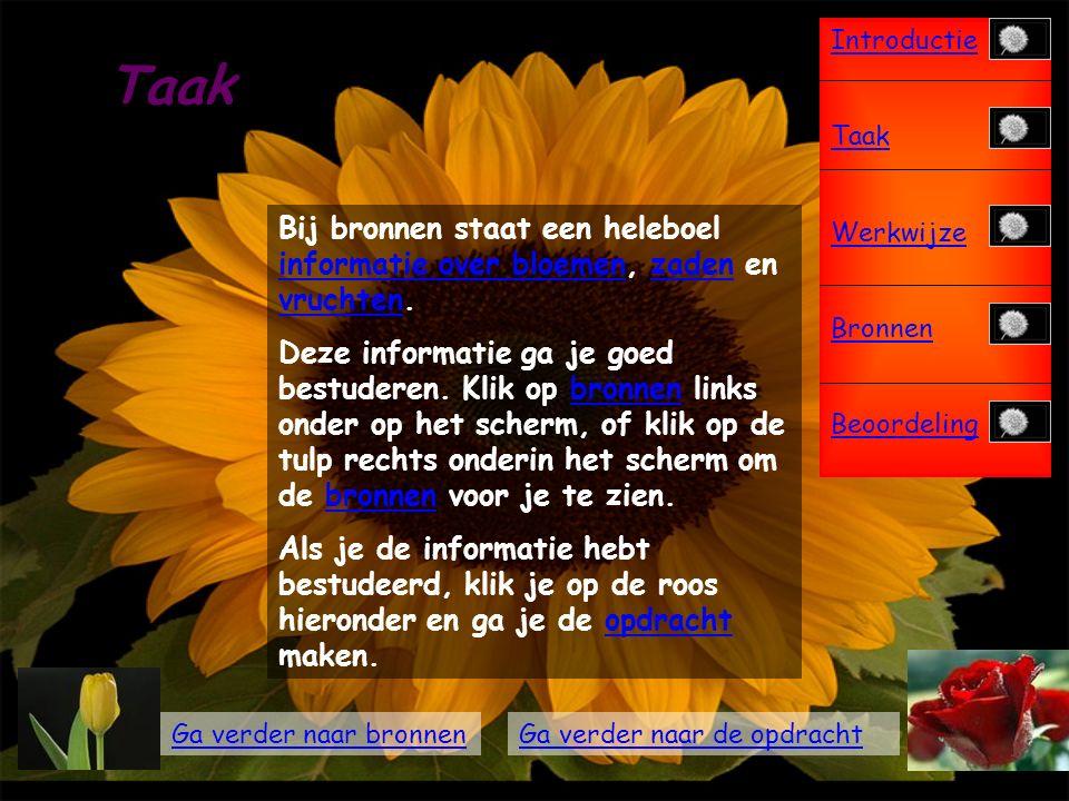 Introductie Taak Werkwijze Bronnen Beoordeling Introductie Bloemen kan je bijna overal om je heen zien.