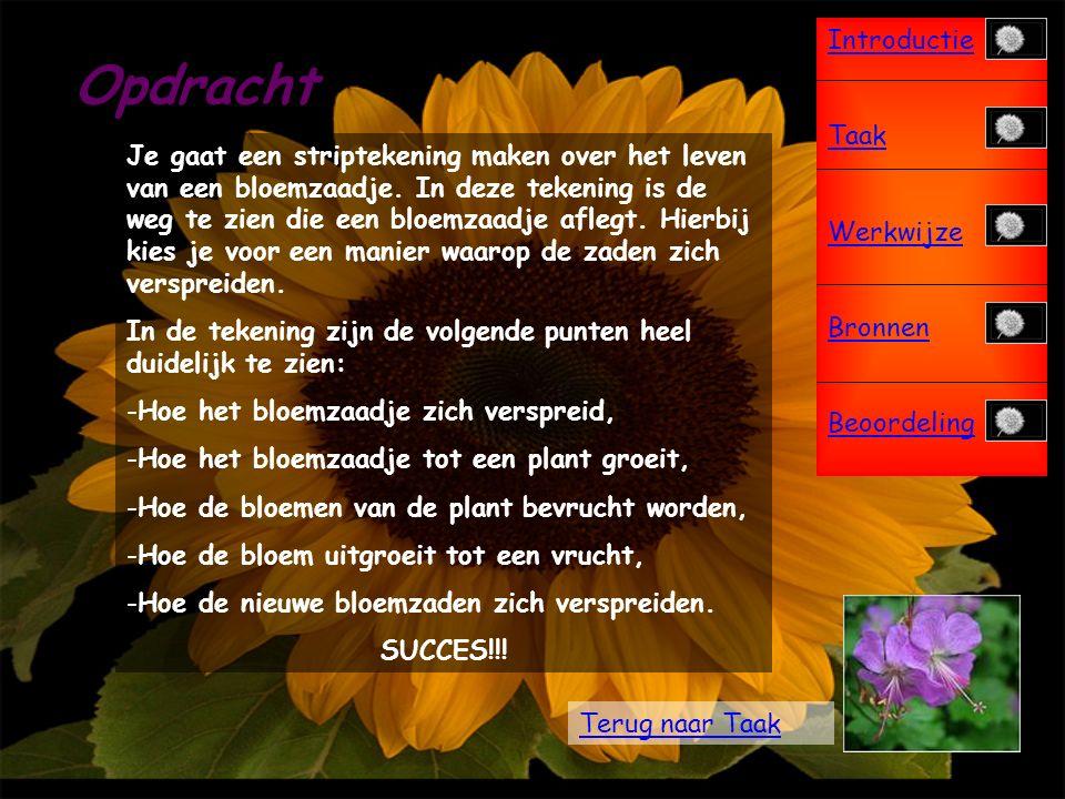 Introductie Taak Werkwijze Bronnen Beoordeling Taak Bij bronnen staat een heleboel informatie over bloemen, zaden en vruchten.