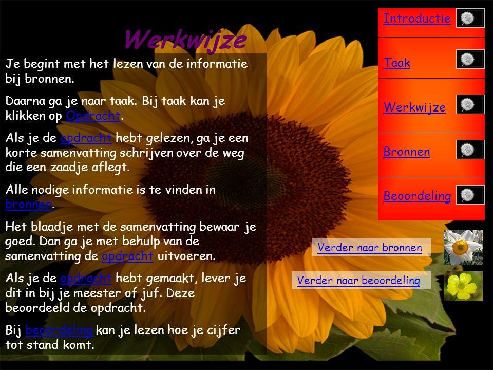 Introductie Taak Werkwijze Bronnen Beoordeling Opdracht Terug naar Taak Je gaat een striptekening maken over het leven van een bloemzaadje.