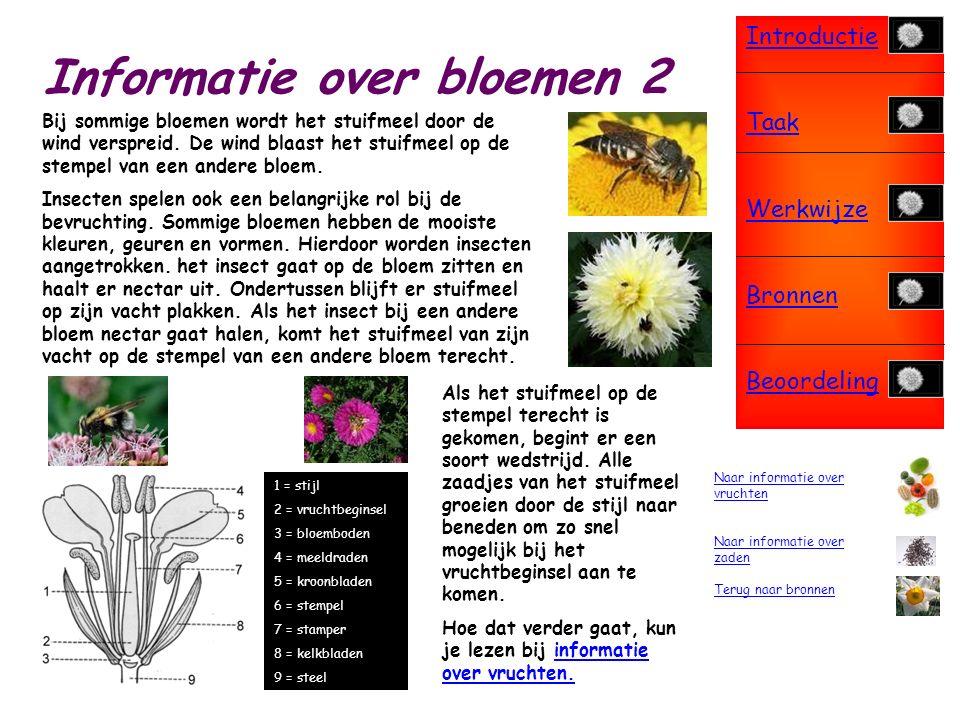 Introductie Taak Werkwijze Bronnen Beoordeling Informatie over bloemen Bloemen zijn heel belangrijk in de voortplanting van planten.