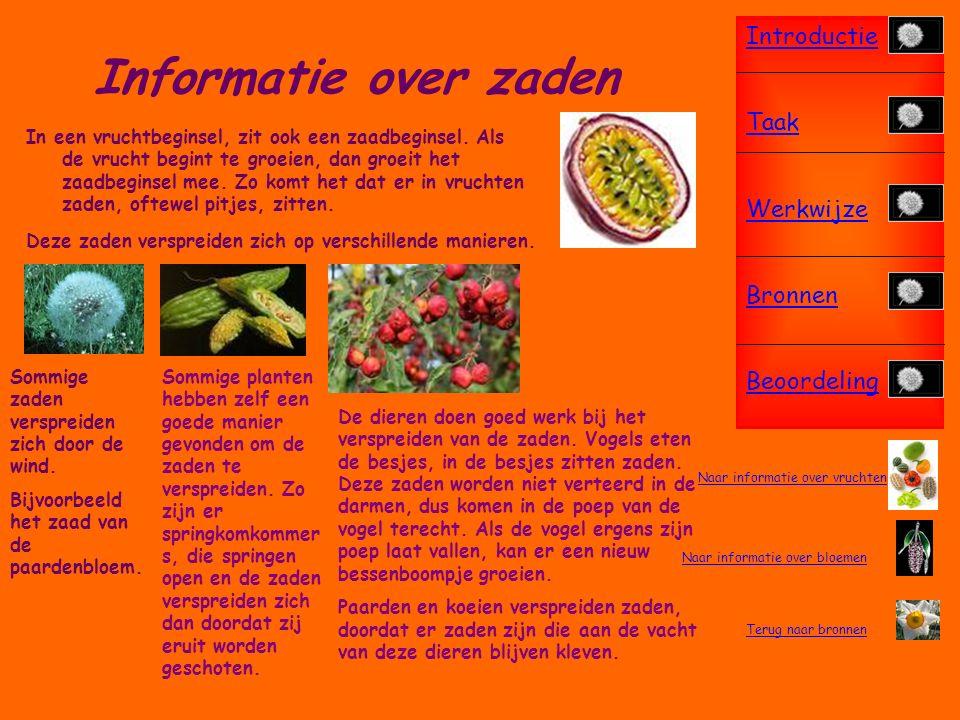 Introductie Taak Werkwijze Bronnen Beoordeling Informatie over vruchten Het zaadje dat het eerst bij het vruchtbeginsel is, is de winnaar.