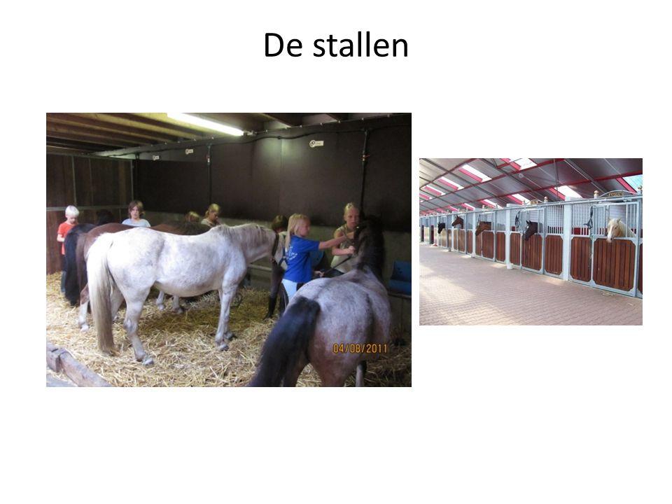 De stallen